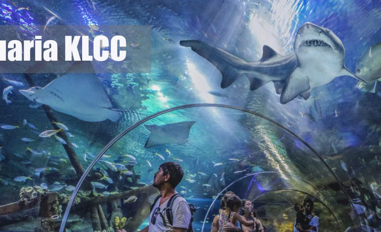 Aquaria KLCC in KL, It is an amazing experience