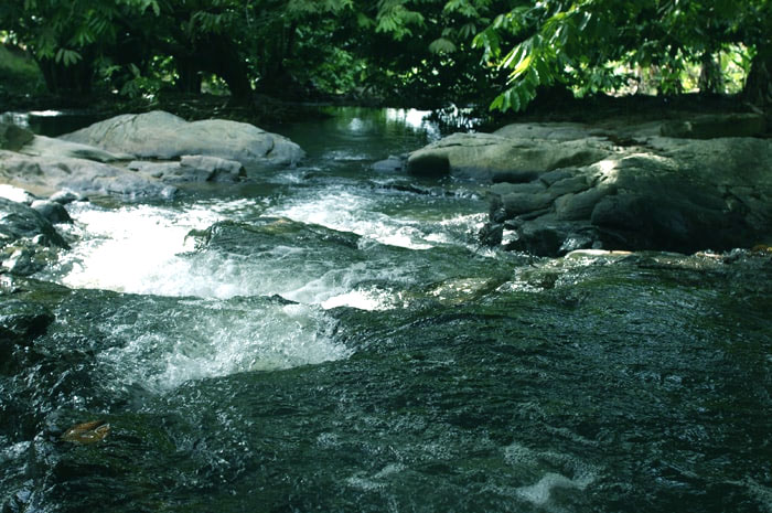 Eight Acres at Raub, it is a startling resort
